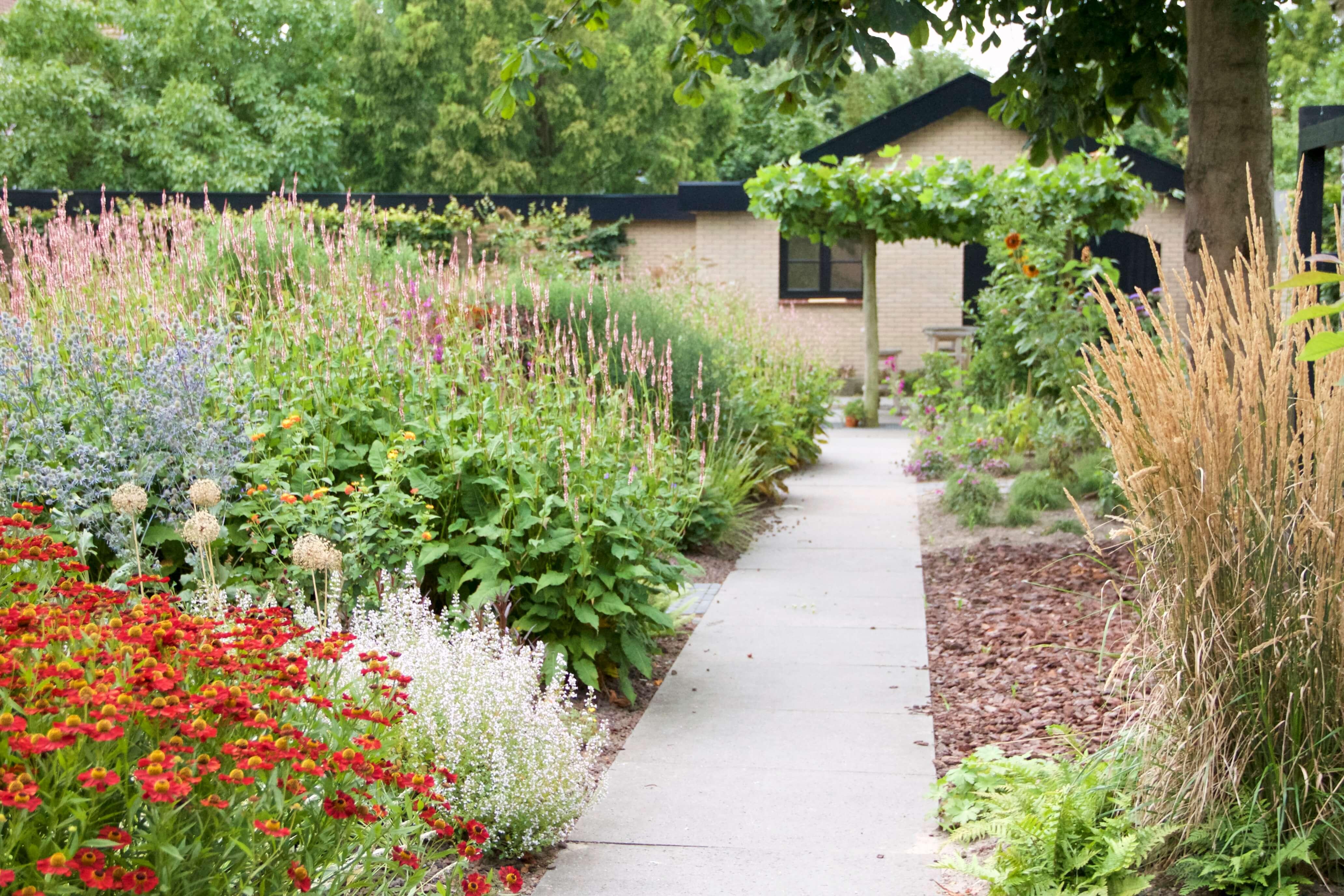 Vaste plantentuin met biozwembad exclusieve tuinen for Vaste zoldertrap laten plaatsen