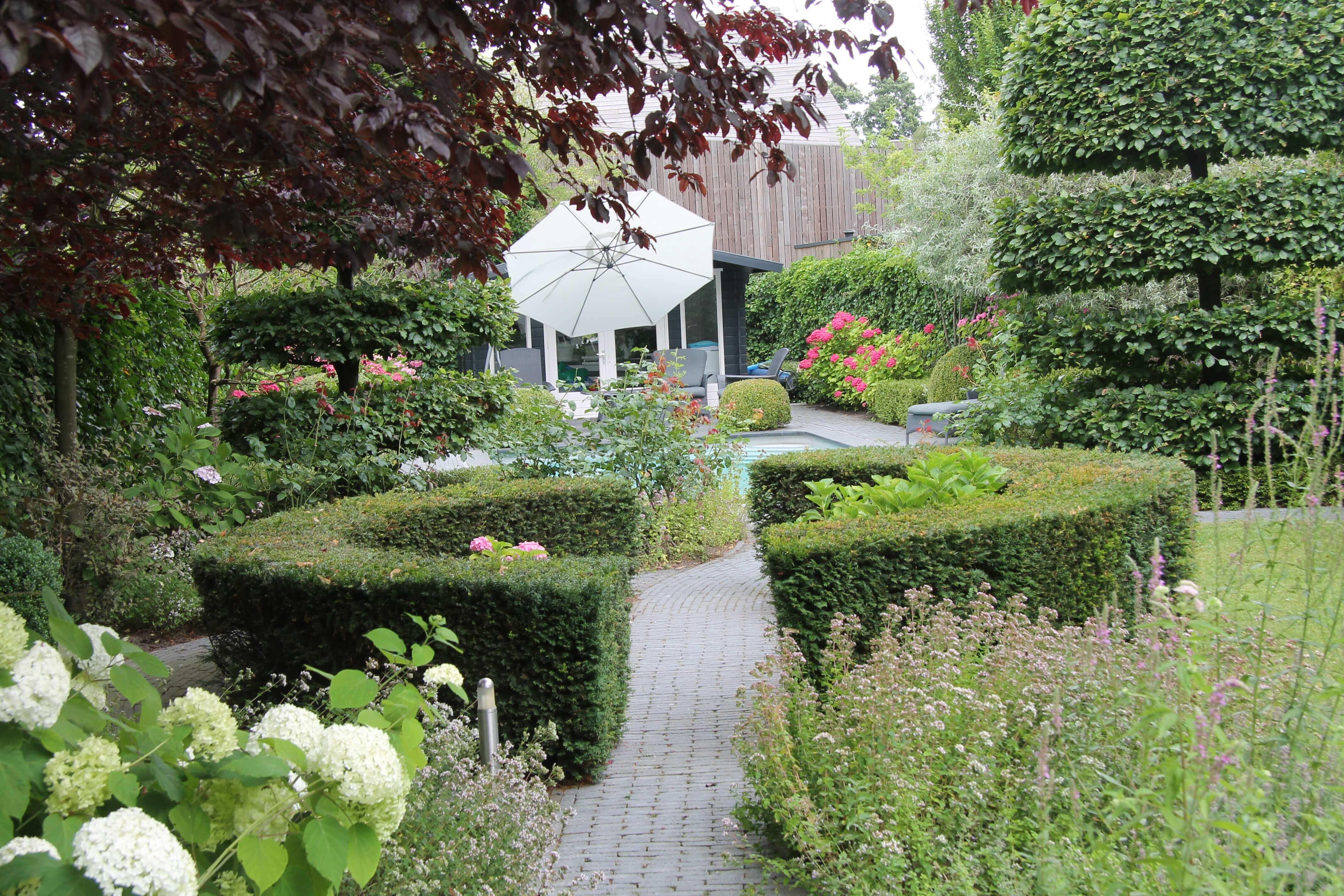 vormbeuken in de tuin