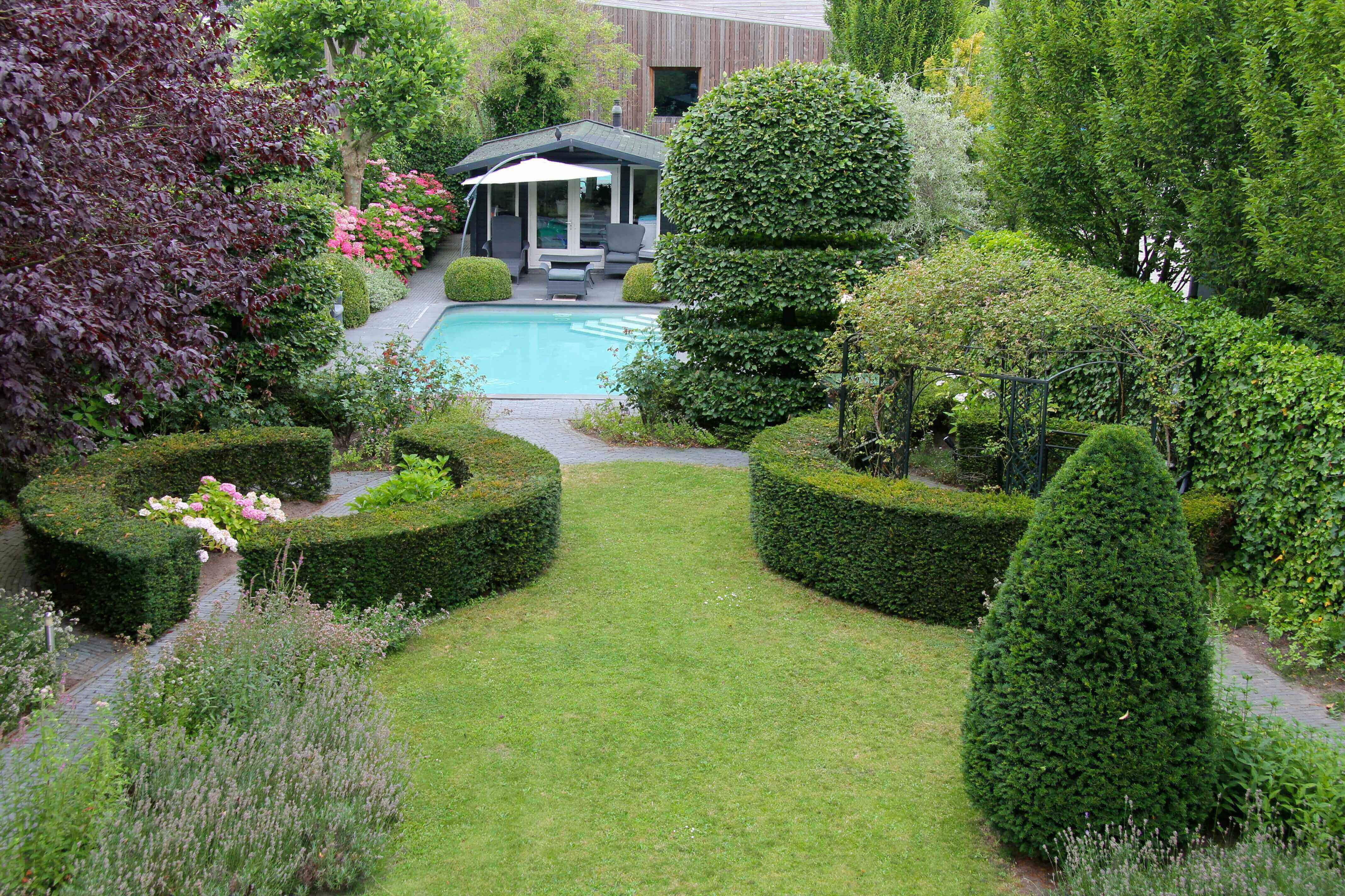 Groene tuin met zwembad