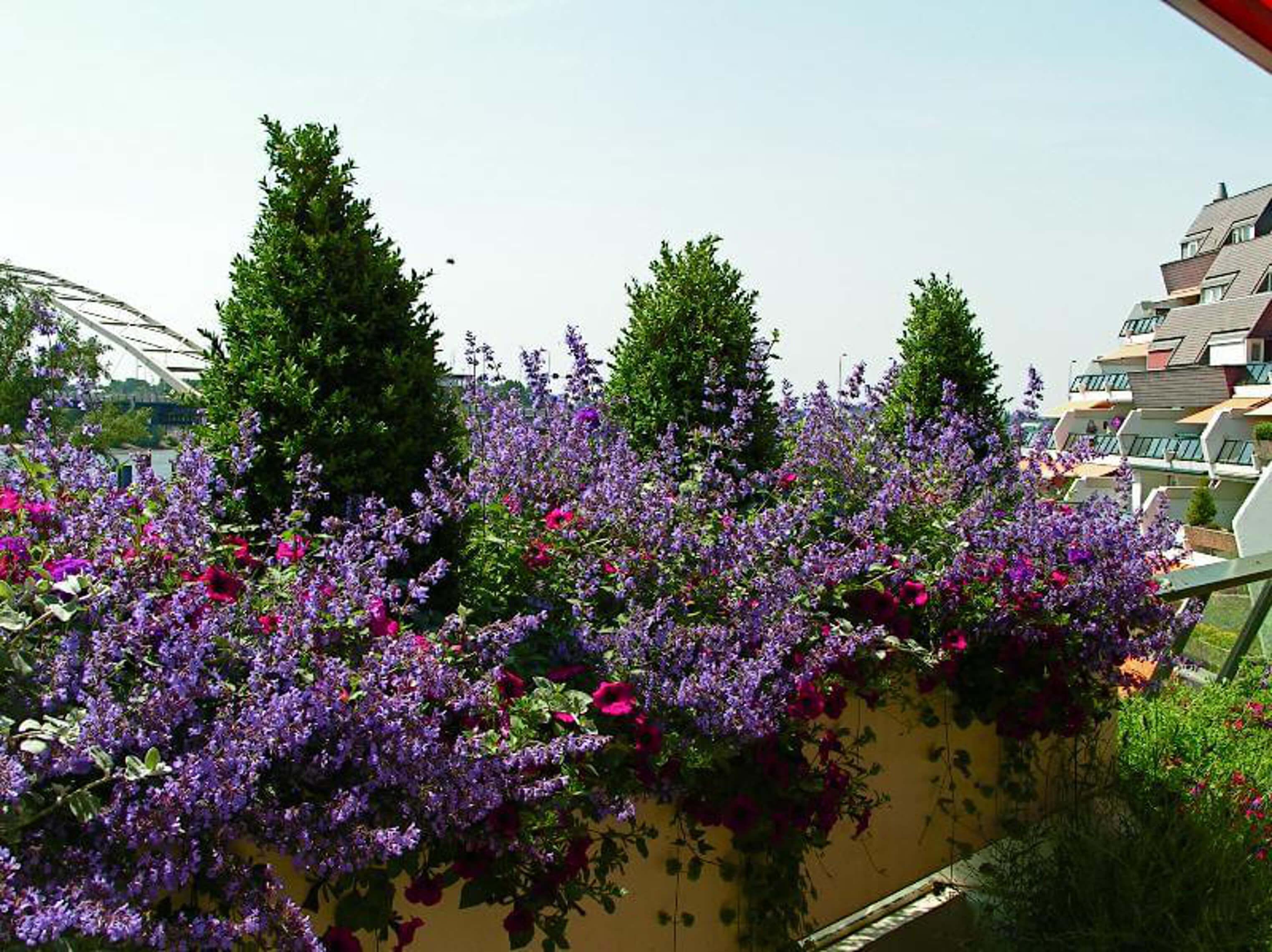 Balkons en dakterrassen exclusieve tuinen for Balkon bloembak